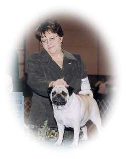 Kathy (ktpugs) - after